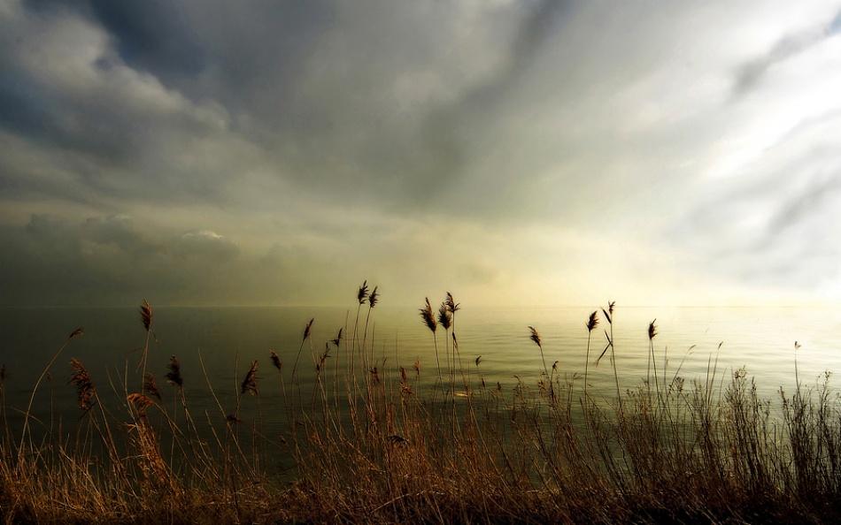 A piece of fine art art photography titled The Lake by Pauline Dekker
