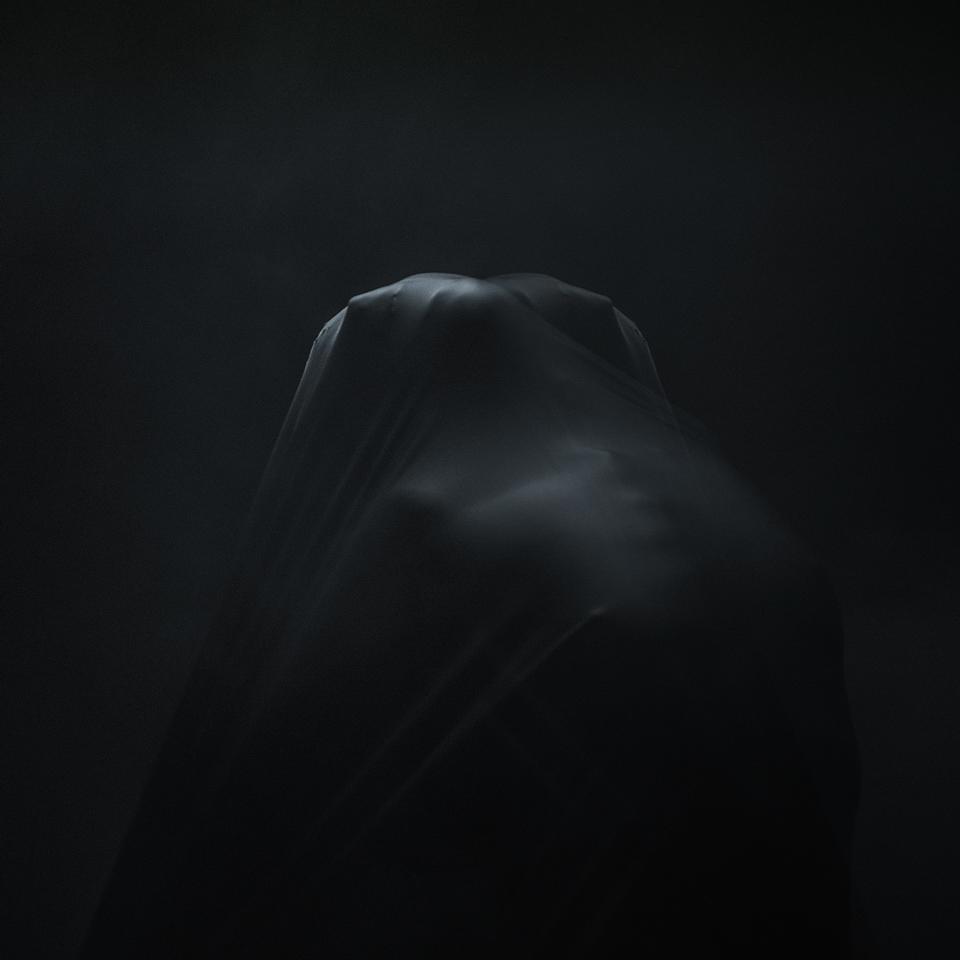 A piece of fine art art photography titled Twin Souls (series Asylum) by alexandru crisan