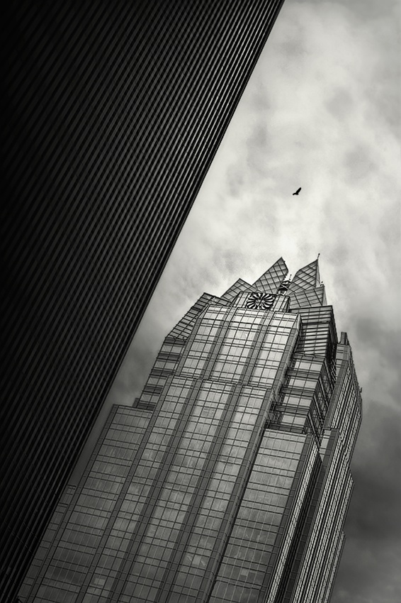 A piece of fine art art photography titled Sentinel by Richard Toro