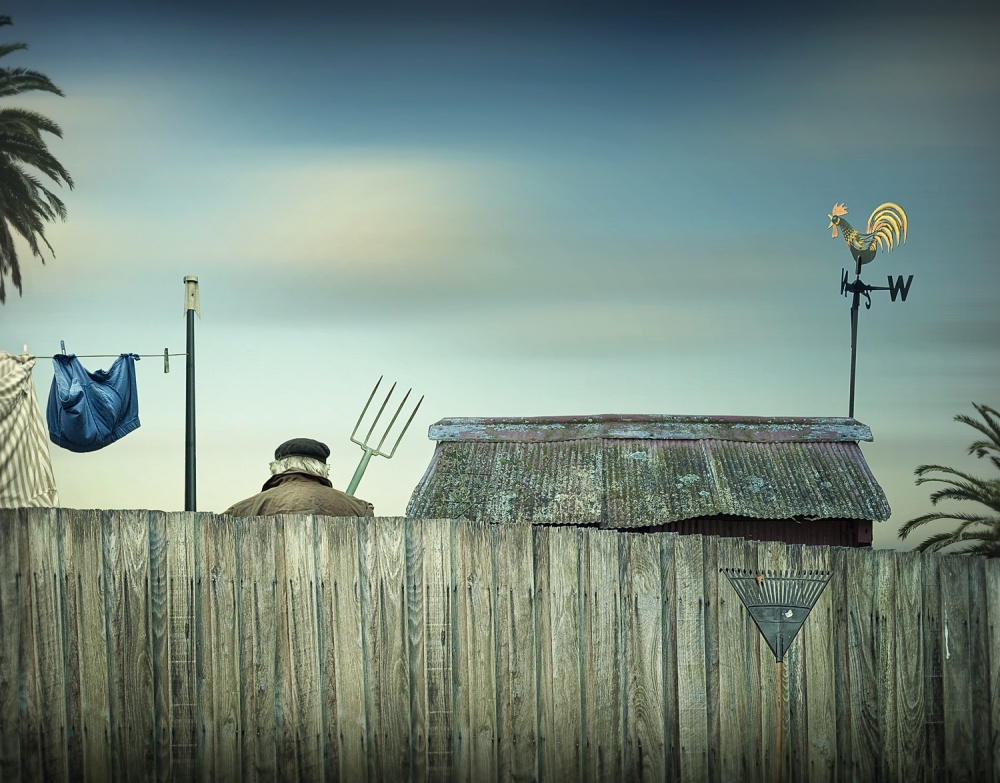 A piece of fine art art photography titled The Neighbours by Adrian Donoghue