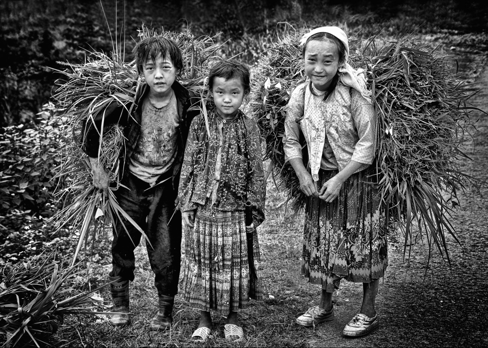 A piece of fine art art photography titled Grass Cutters of Ha Giang by John Moulds