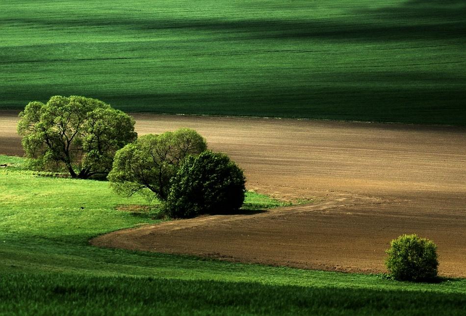 A piece of fine art art photography titled Natural Light by Janusz Wanczyk