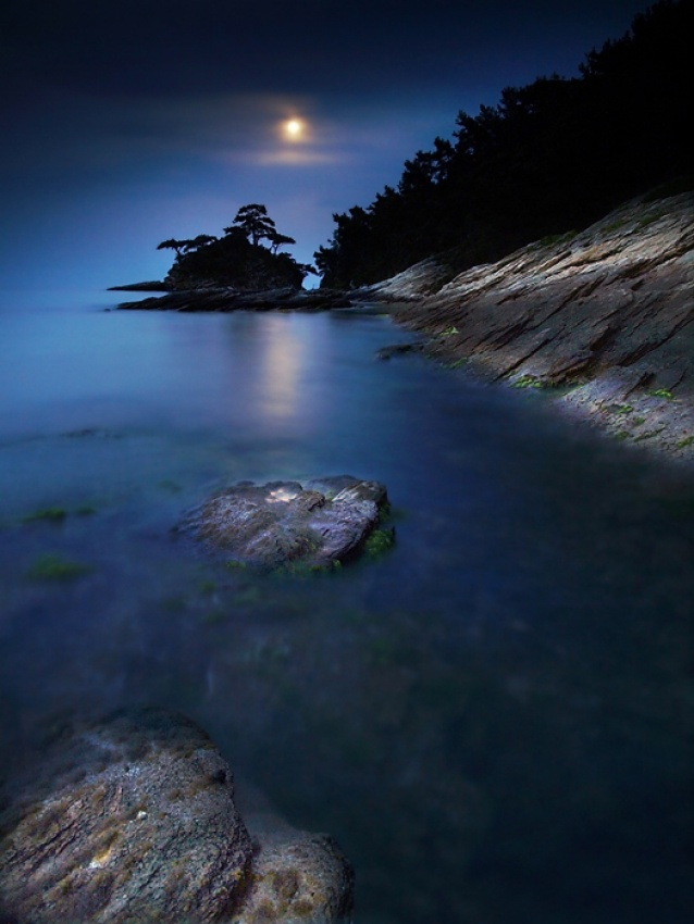 A piece of fine art art photography titled On the Moonlight by Marin Marinov