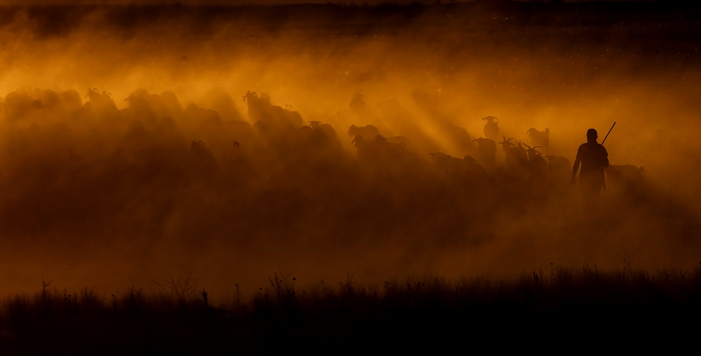 A piece of fine art art photography titled Kingdom of the Sun by Serhat Karaca