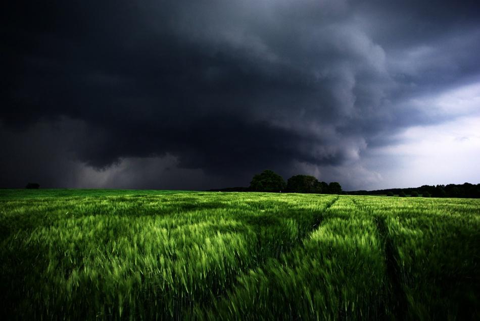 A piece of fine art art photography titled Dangerous by kregon