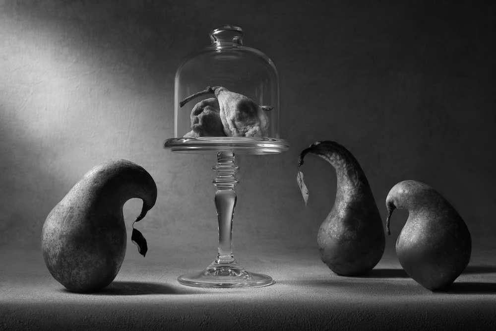 A piece of fine art art photography titled Dried Fruit the Sad Farewell by Victoria Ivanova