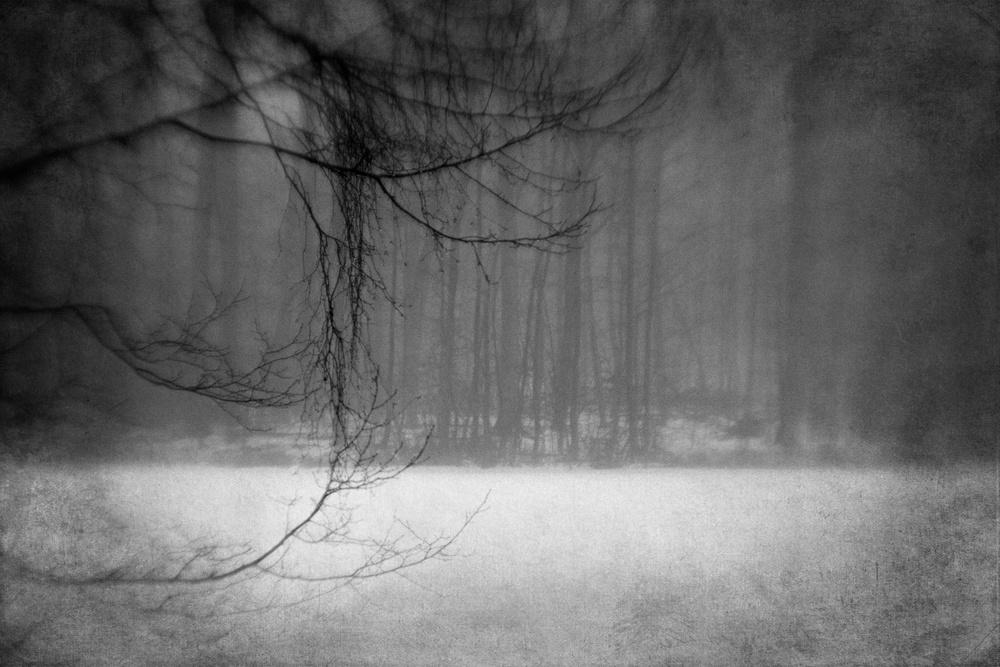 A piece of fine art art photography titled Winter Mood 03 by Jørgen Feldstedt