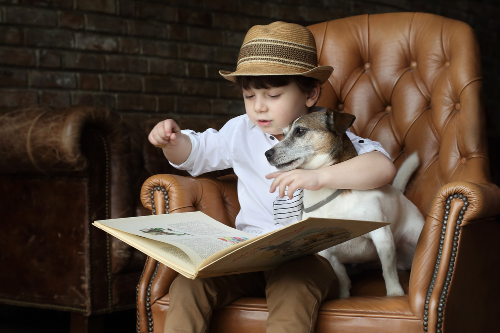 A fairy tale for the little dog