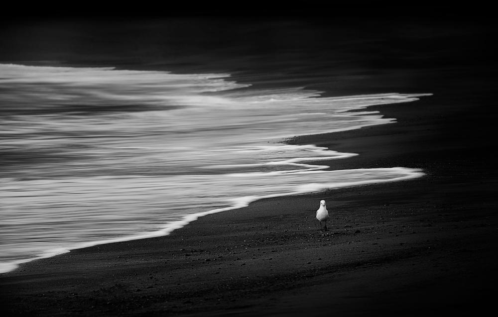 On The Black Sand