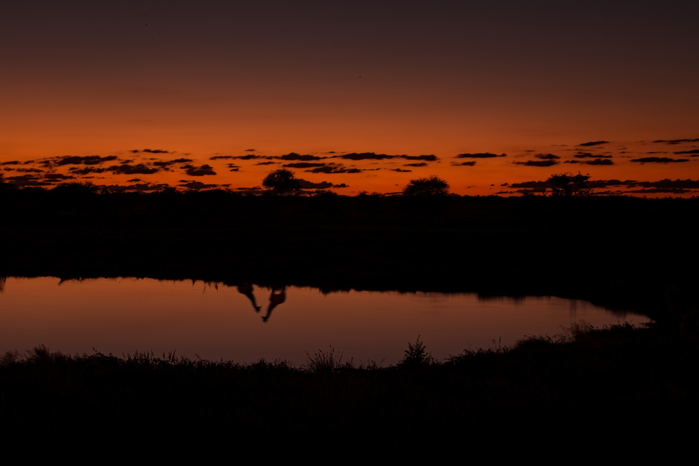 Sunset Okaukuejo Waterhole.