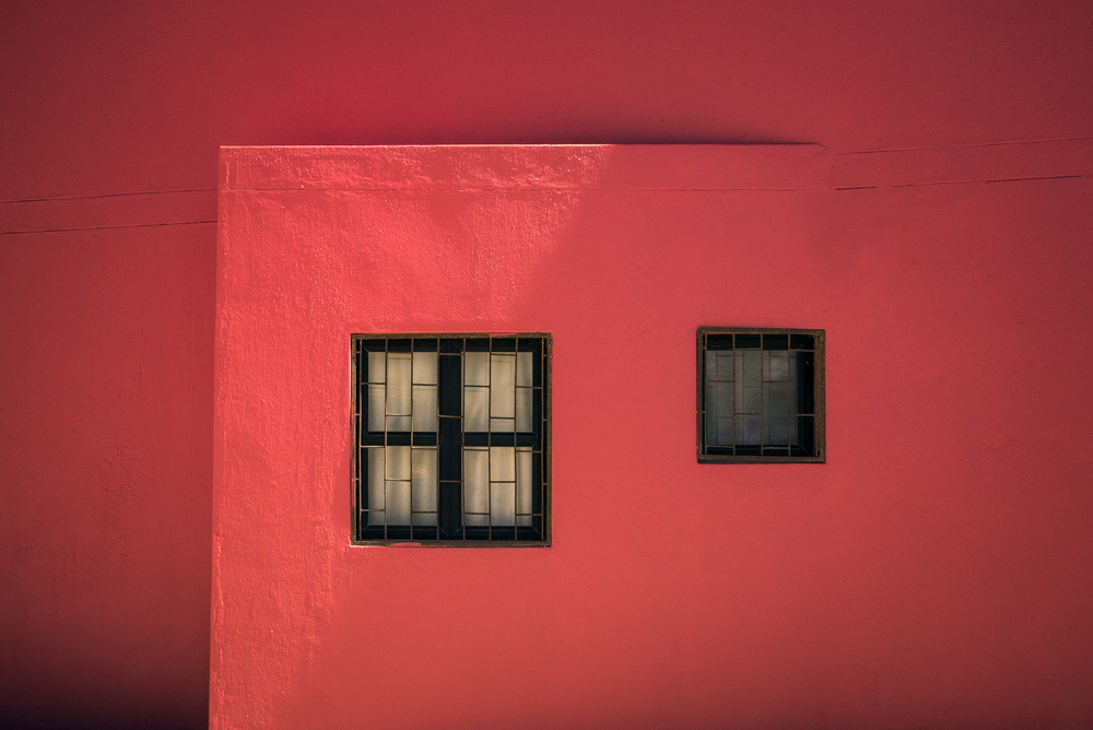 A piece of fine art art photography titled In the Pink by Linda Wride