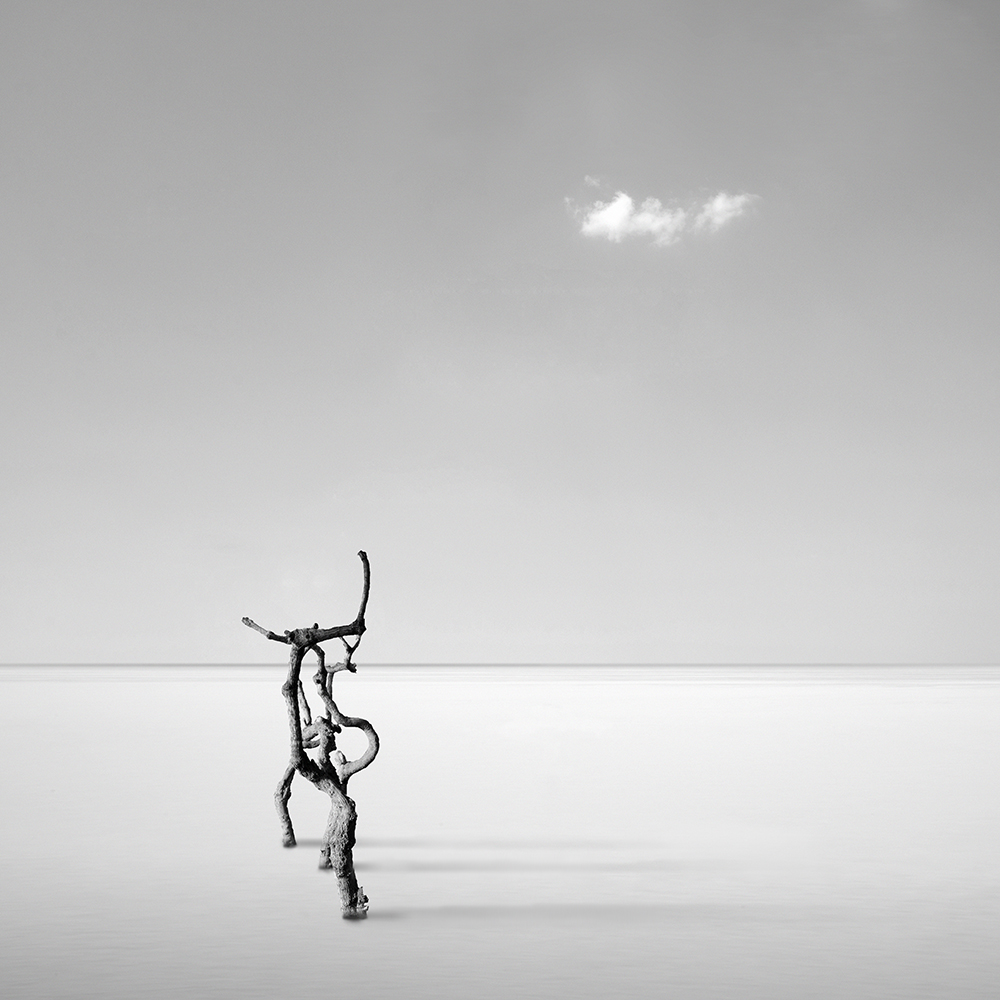 A piece of fine art art photography titled Silver Serenity by George Digalakis