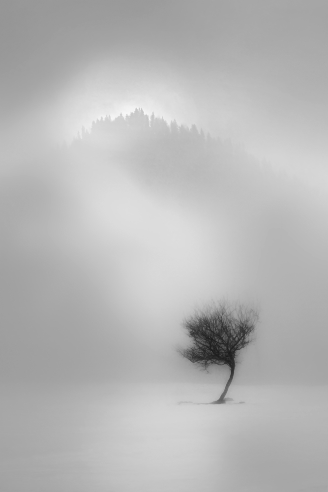 A piece of fine art art photography titled Awaiting the Light by Gabriel Bistriceanu