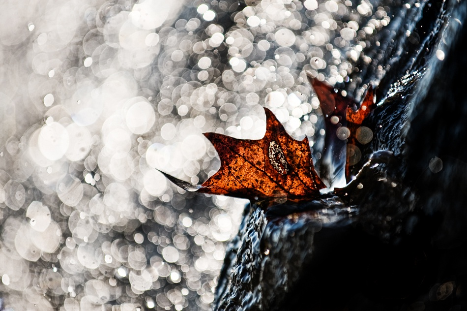A piece of fine art art photography titled Fall of Light by Harald Bildner