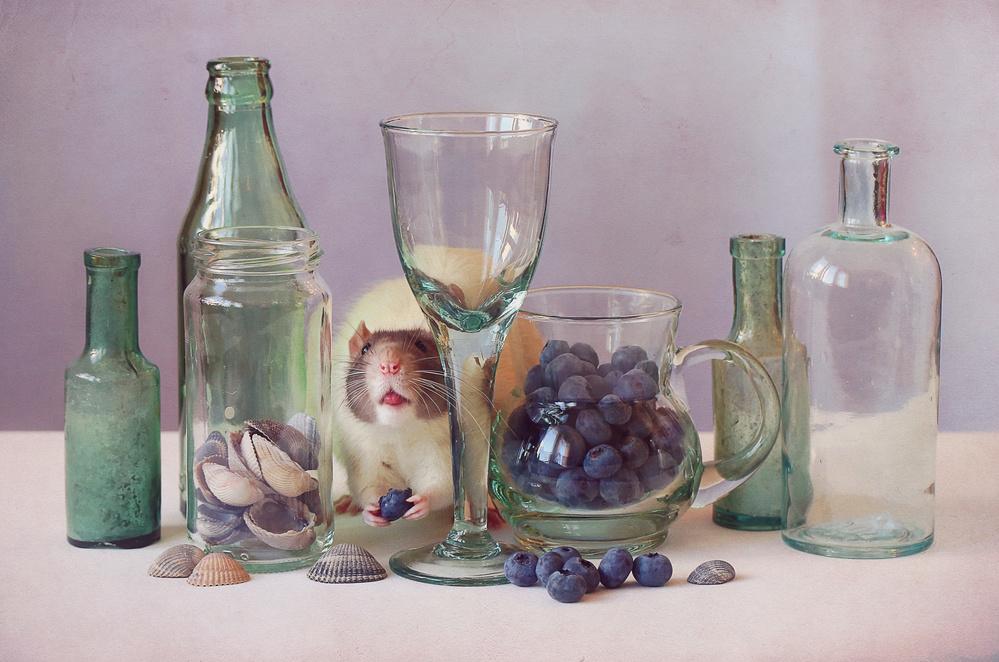 A piece of fine art art photography titled Blueberries by Ellen van Deelen