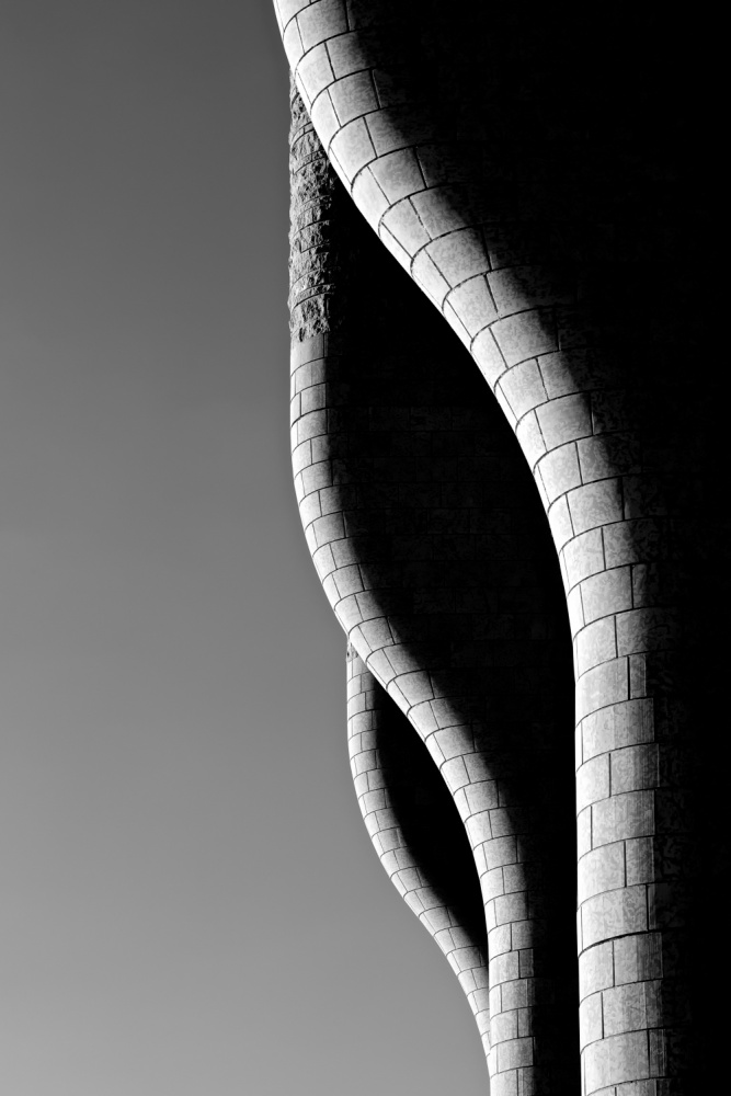 A piece of fine art art photography titled Perfect Butts by Thierry Jung