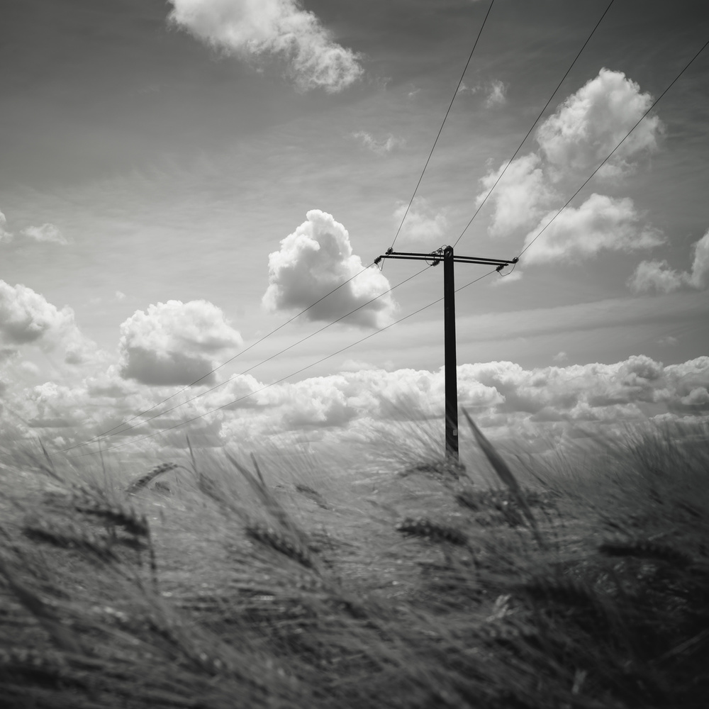 A piece of fine art art photography titled T by Christophe Staelens