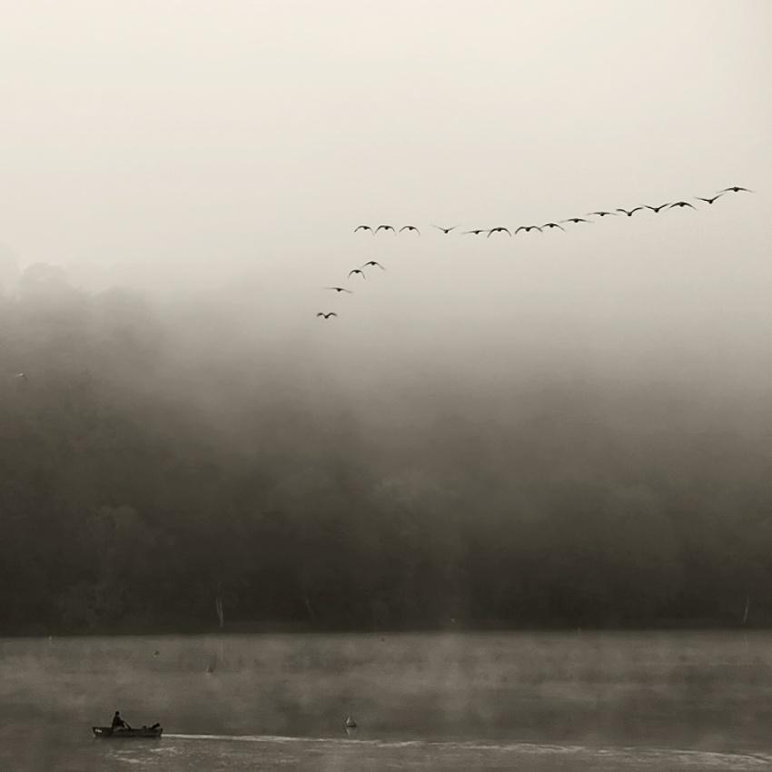 A piece of fine art art photography titled Arrival by Mzett