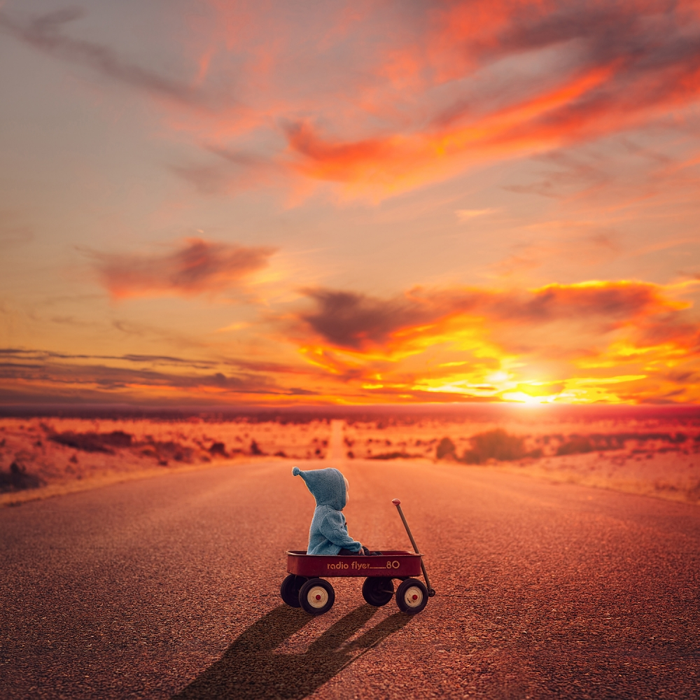 A piece of fine art art photography titled The Long Road by Lisa Holloway