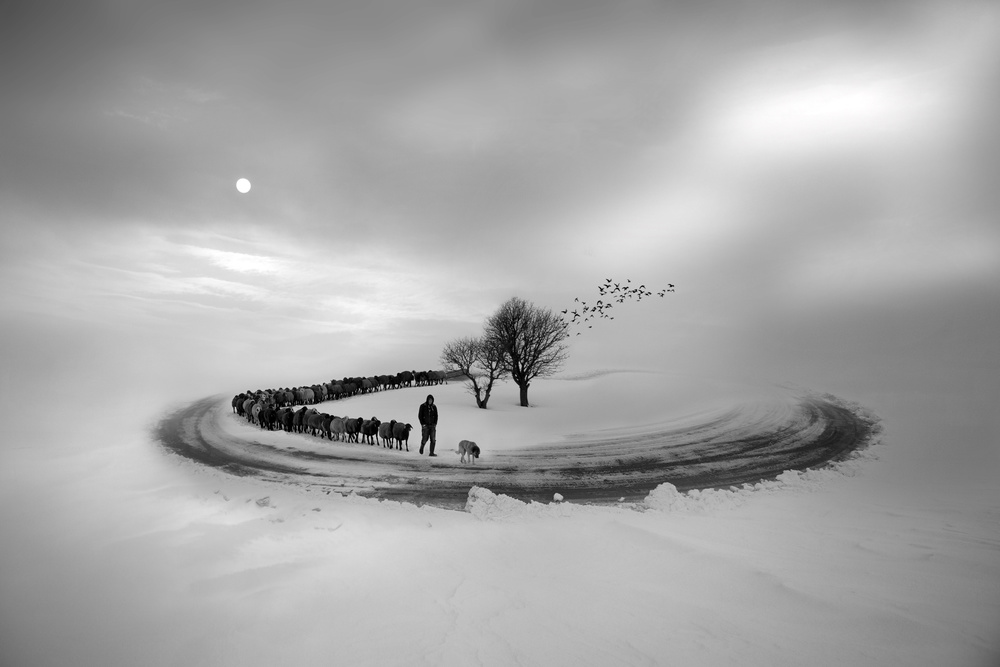 white infinity-4