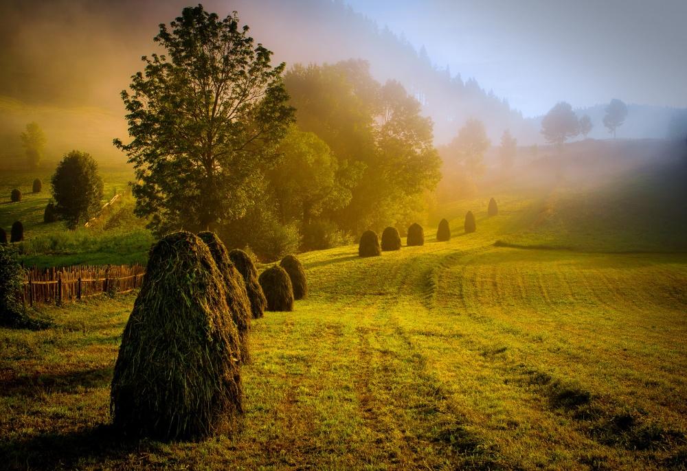 A piece of fine art art photography titled Beautiful Sunrise by serban