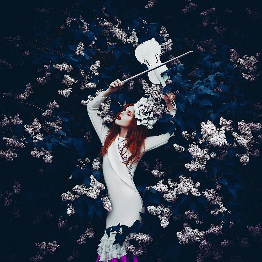 View this piece of fine art photography titled Musique de beauté by Hamidreza Sheikhmorteza