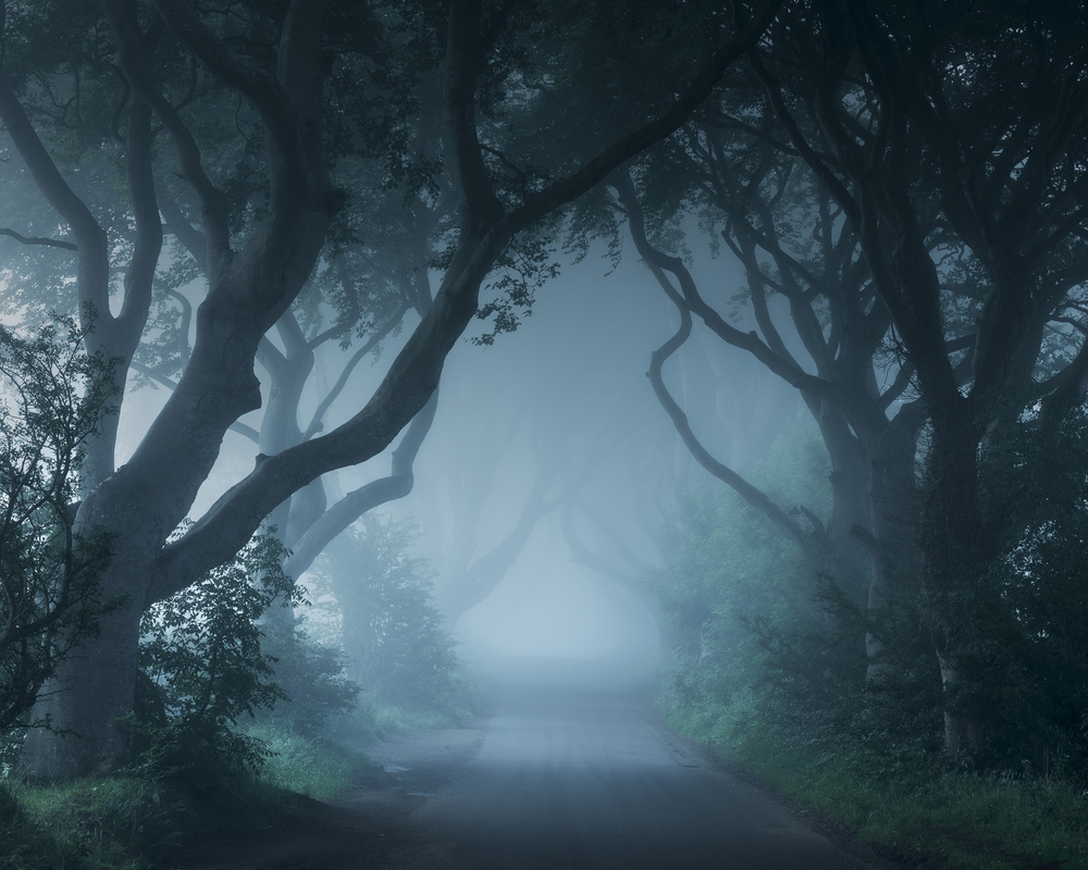 """A piece of fine art art photography titled """"In the Dreams of Mortals"""" by Johnny Baird"""
