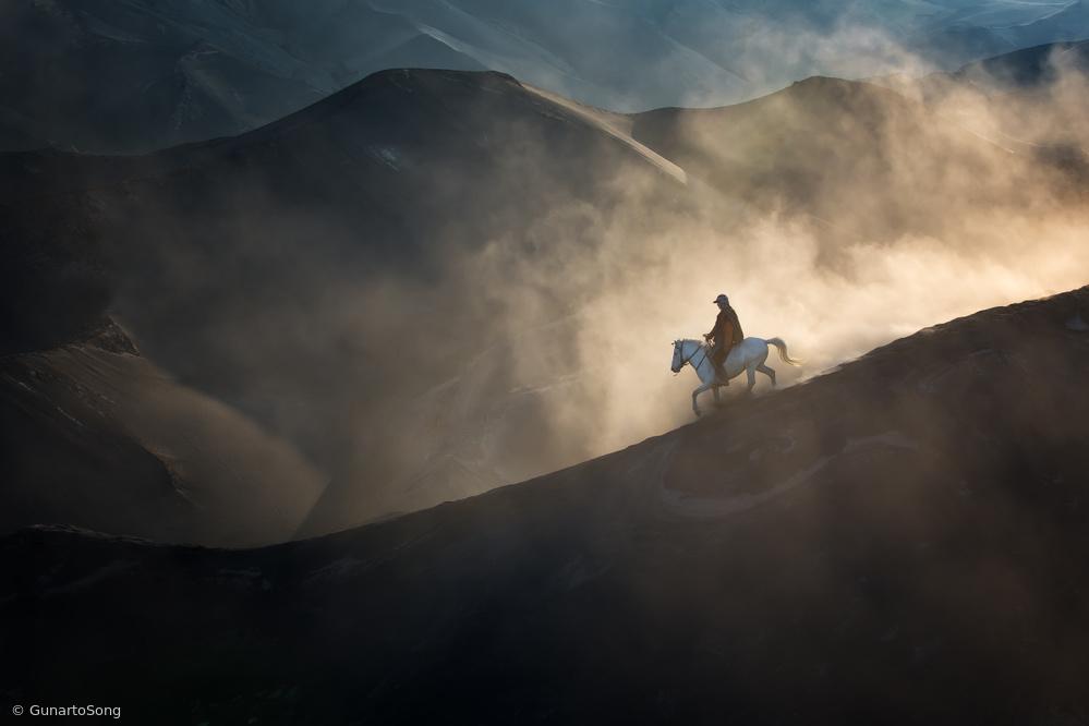 Ranger of The Dune