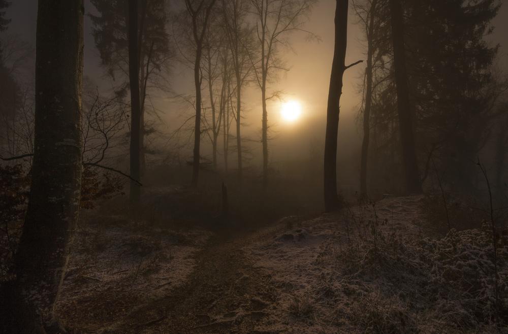 A piece of fine art art photography titled Winter Sunrise by Norbert Maier