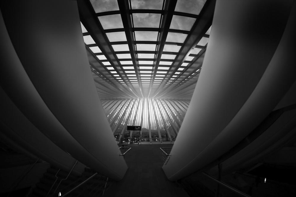 A piece of fine art art photography titled Calatravanism by Arnd Gottschalk