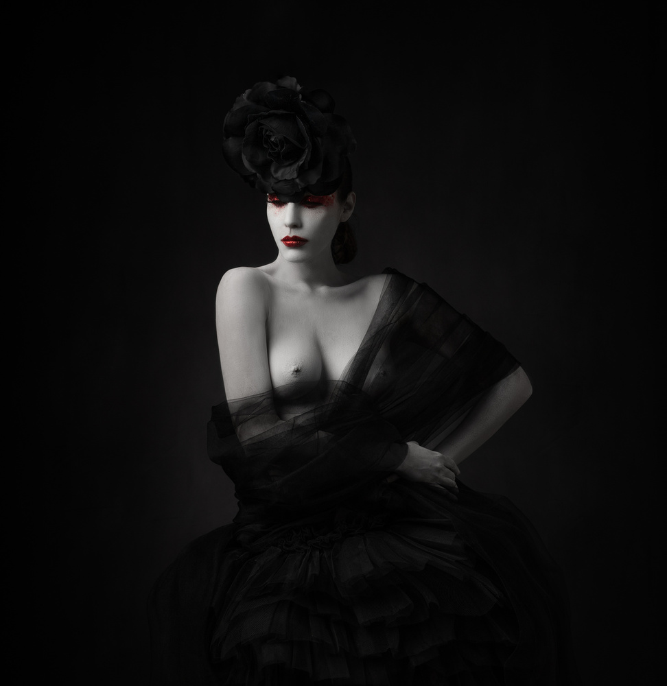 View this piece of fine art photography titled Black Rose...!! by Alfredo Sanchez