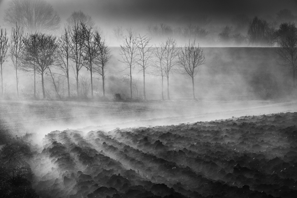 A piece of fine art art photography titled Foggy Land by Eddy Verloes