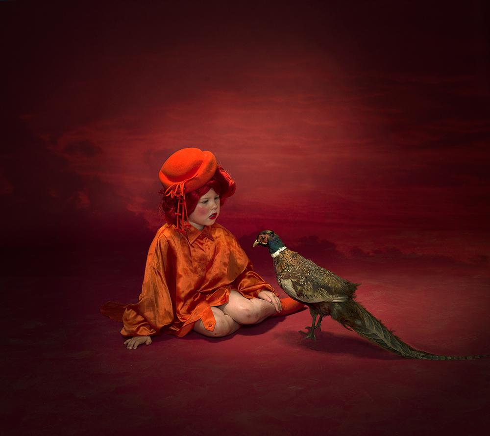 A piece of fine art art photography titled Bird by Peter Kemp