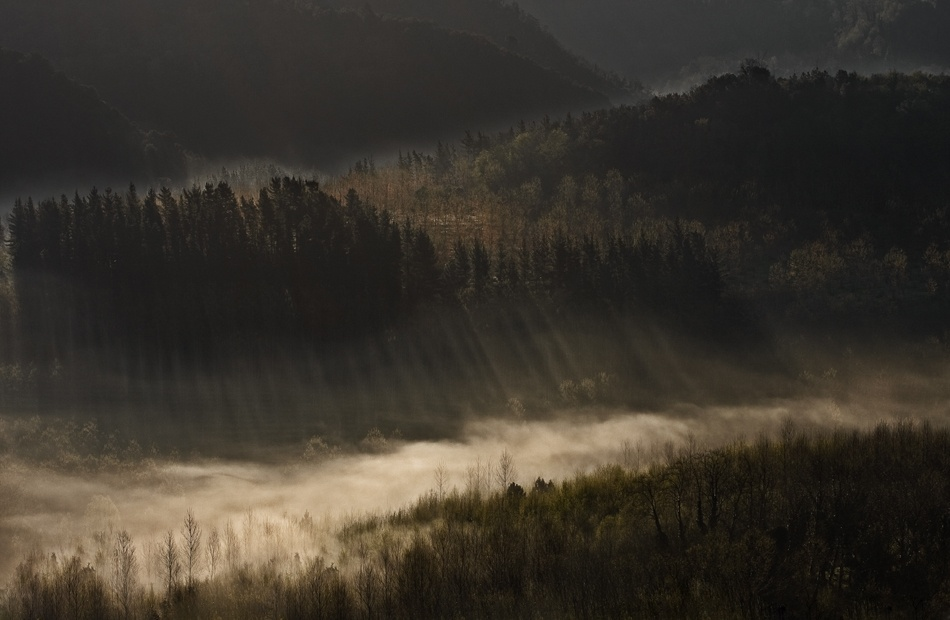 A piece of fine art art photography titled A Fog River by andrea lorenzetti