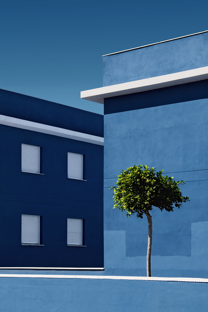 A piece of fine art art photography titled Architecture and Nature by Juanjo Fernández