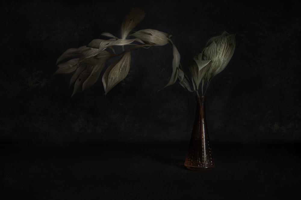 View this piece of fine art photography titled Sideways by Luiz Laercio