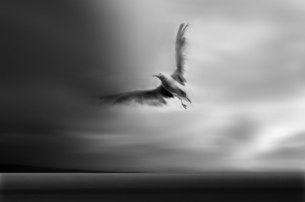 A piece of fine art art photography titled Fly Away With Me by Yvette Depaepe