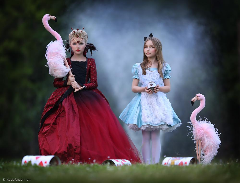 Flamingo Social