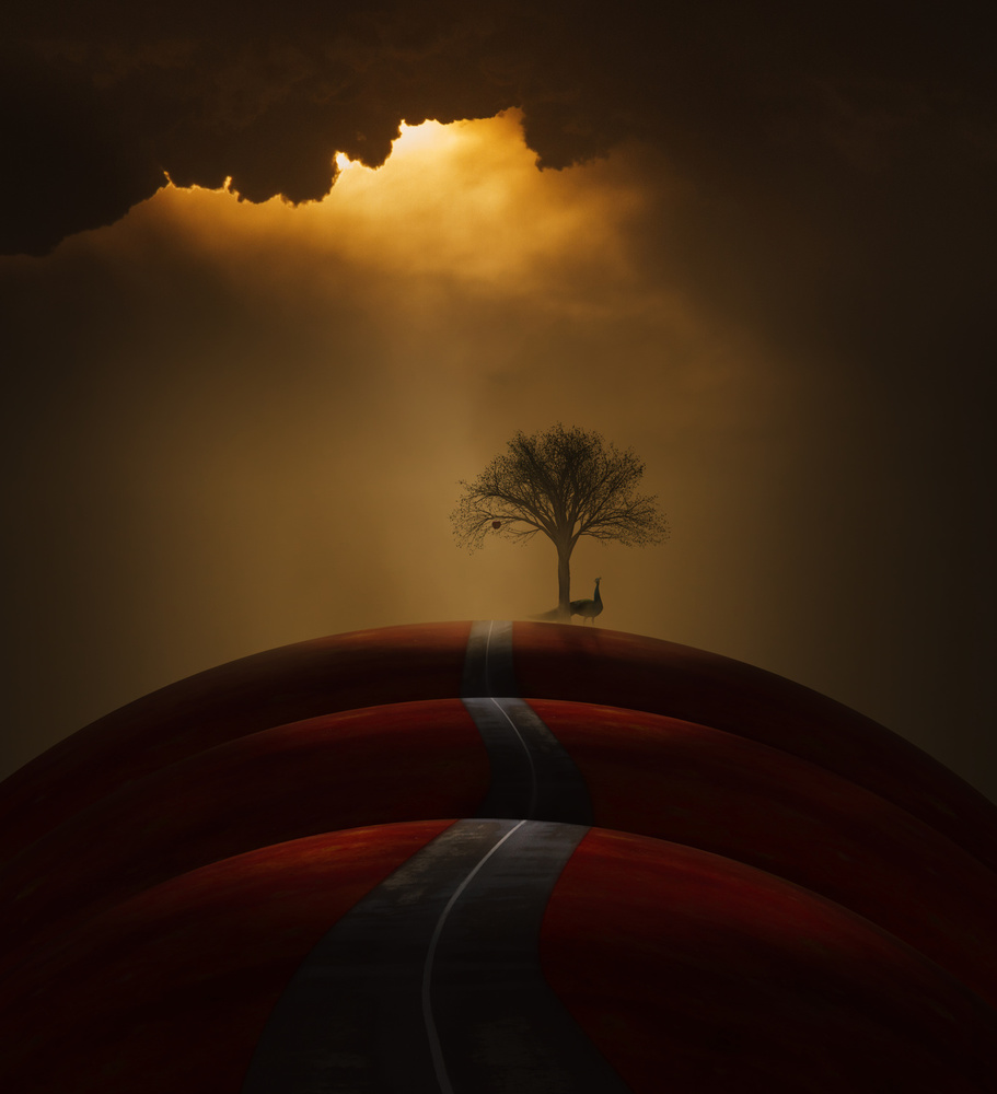View this piece of fine art photography titled Red Hills by Sasan Parsadmehr