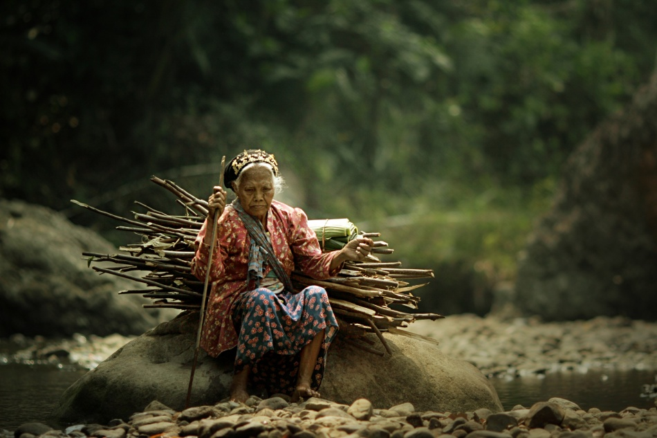 A piece of fine art art photography titled Wood Collector by asit