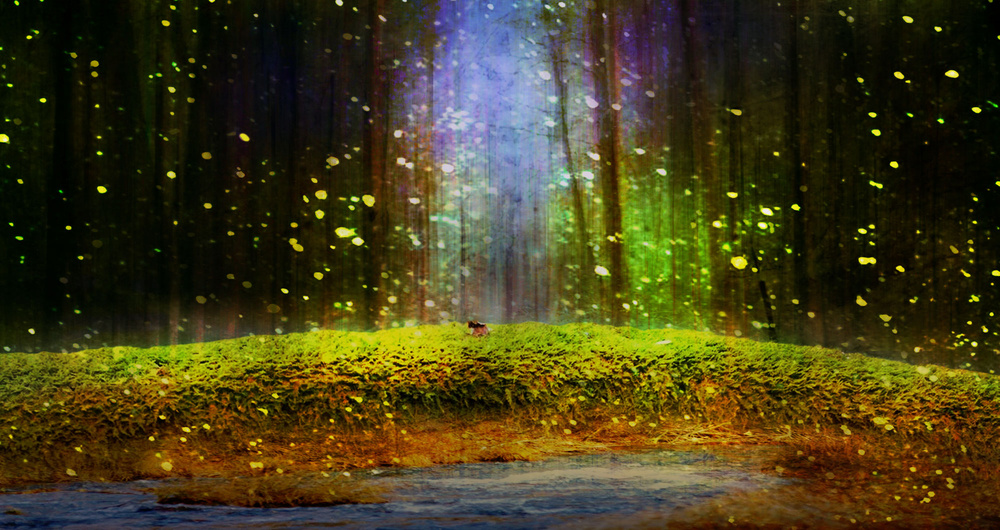 A piece of fine art art photography titled Fireflies Over Moss by BethAnne Lutz