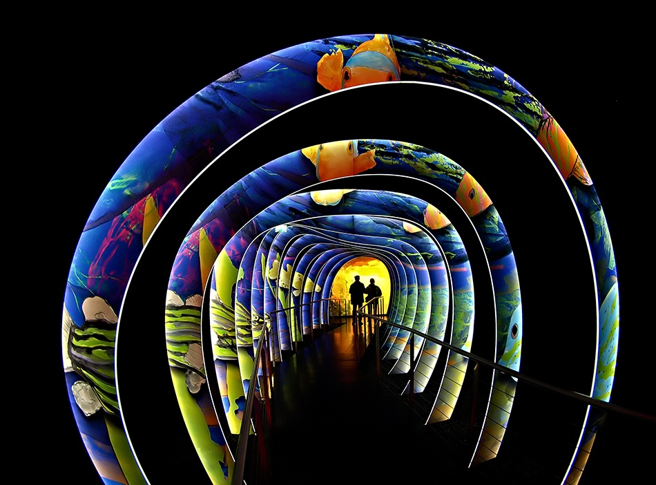 A piece of fine art art photography titled Lighttunnel by Stephan Pechstein