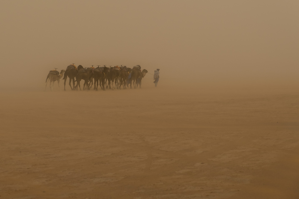 View this piece of fine art photography titled Desert Storm by Martin Steeb