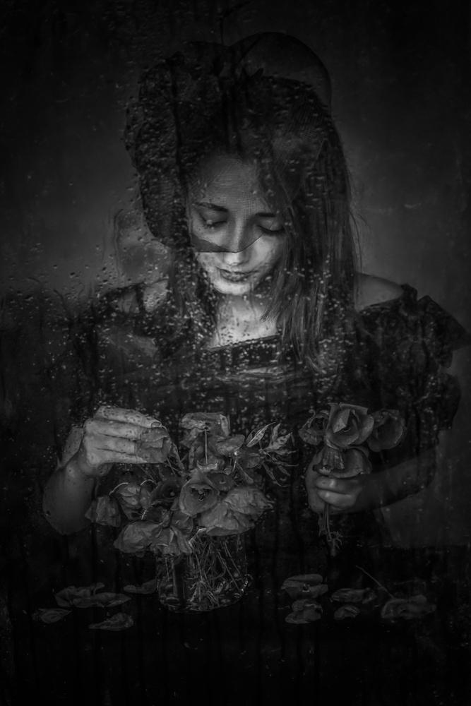 A piece of fine art art photography titled Poppy by Ummu Nisan Kandilcioglu  AFIAP