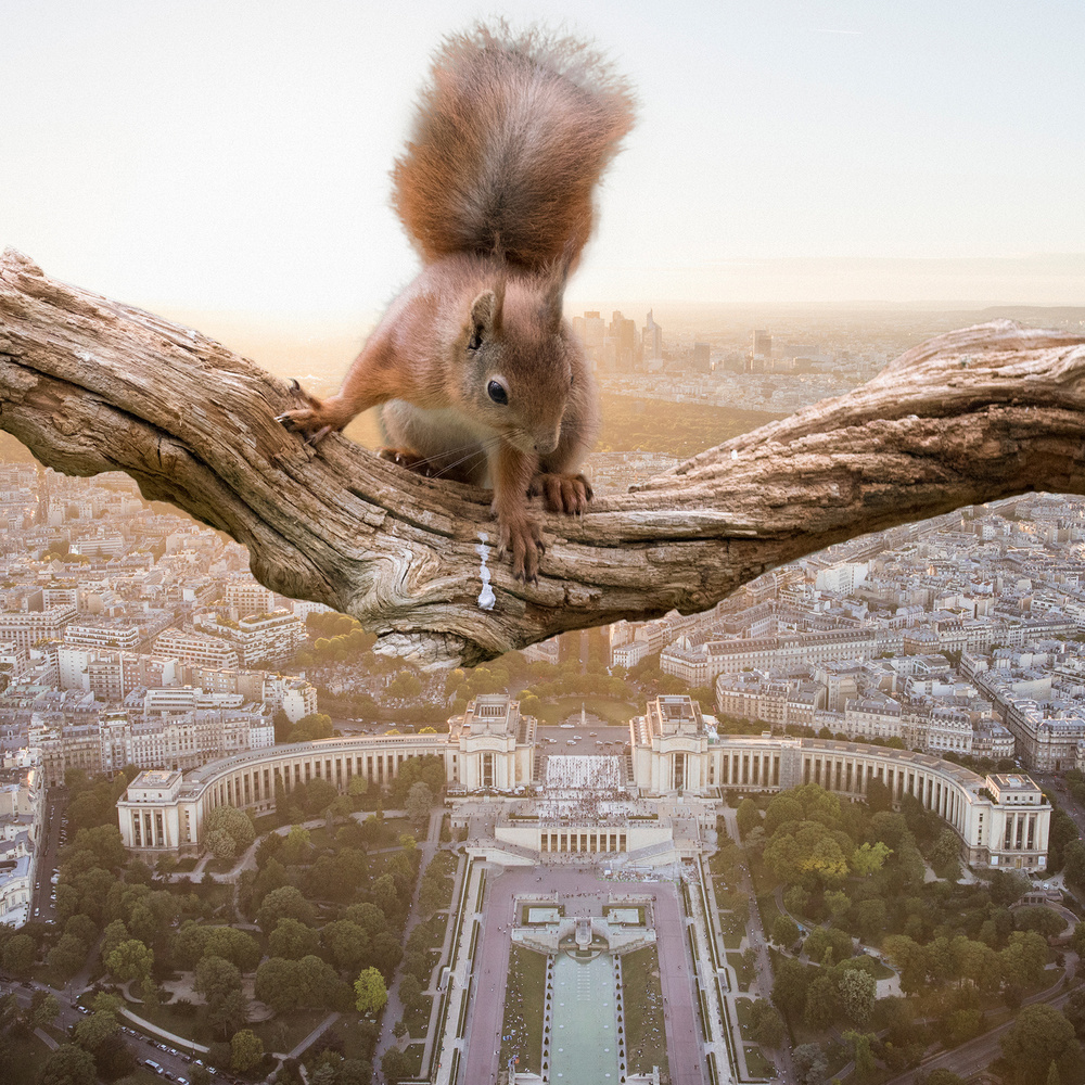 A piece of fine art art photography titled Exploring the Paris by Mikael Sundberg