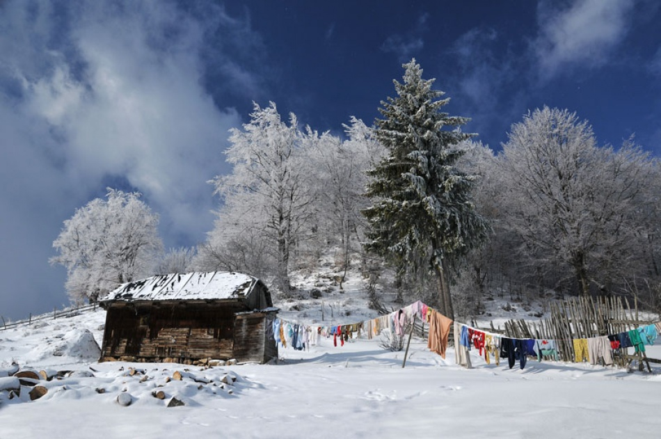 A piece of fine art art photography titled Culori In Iarna (colours In Winter) by Vlad Dumitrescu