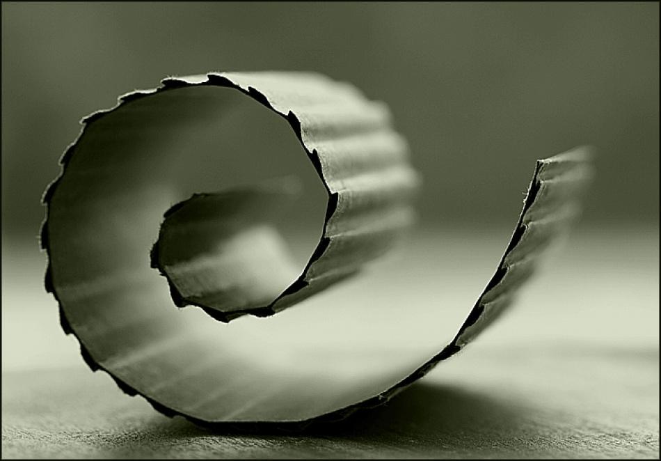 A piece of fine art art photography titled Untitled by Erika Nagy