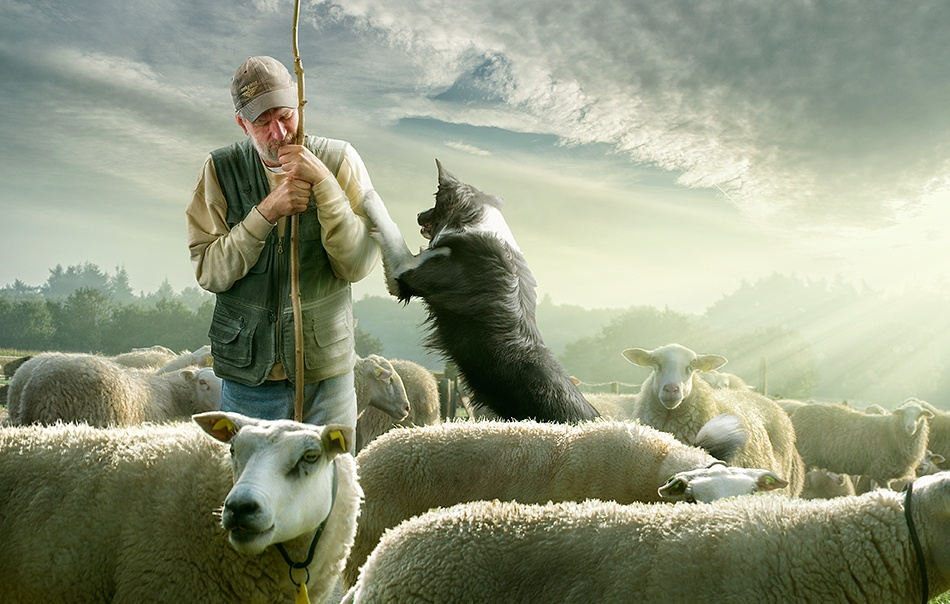 A piece of fine art art photography titled Counting SheepzzzZZZzzz by Adrian Sommeling