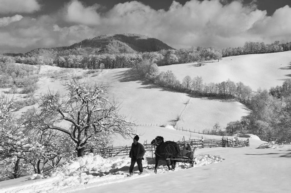 A piece of fine art art photography titled Intr-o Zi De Iarna (on a Winter Day) by Vlad Dumitrescu