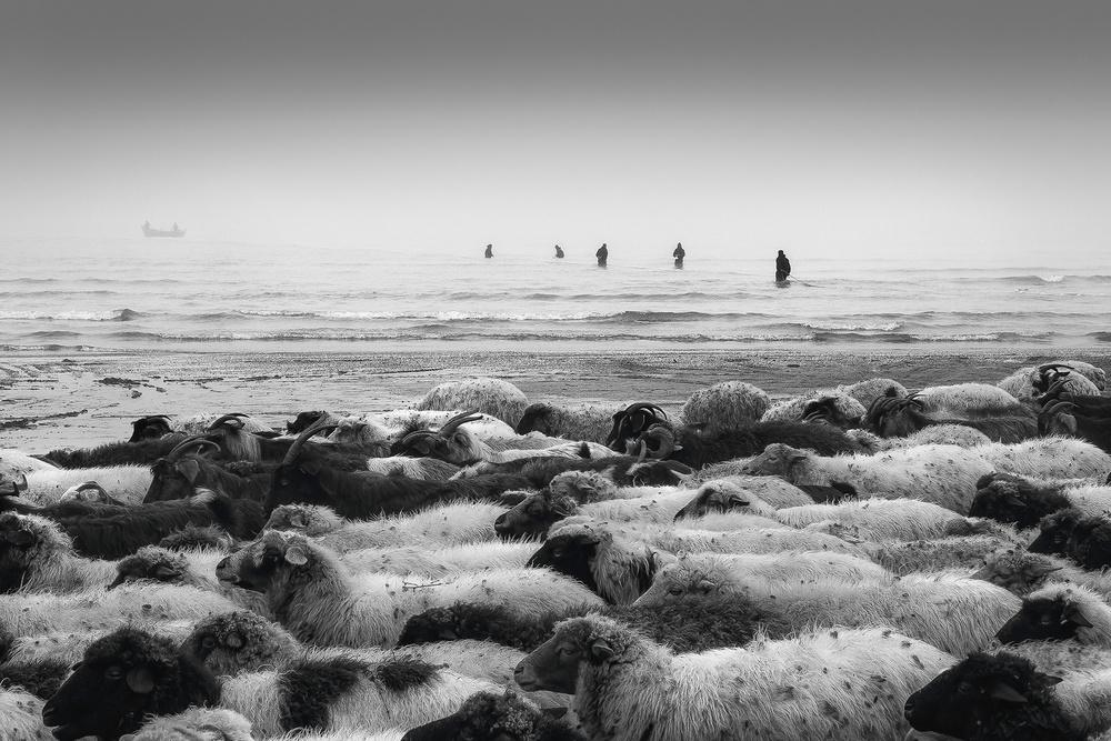 A piece of fine art art photography titled Untitled by Saman Khoshamuz